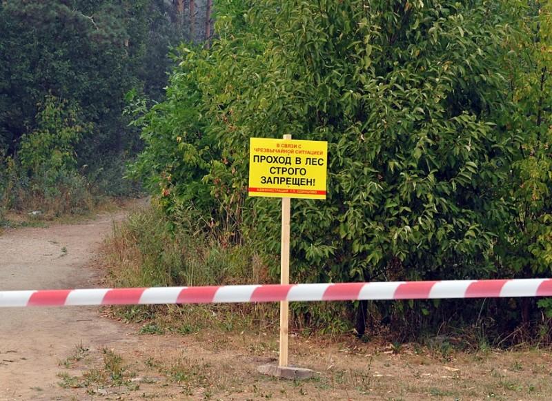 Лес закрыт