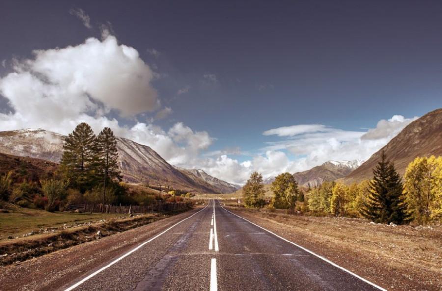 Медведев: дорогу дорогам