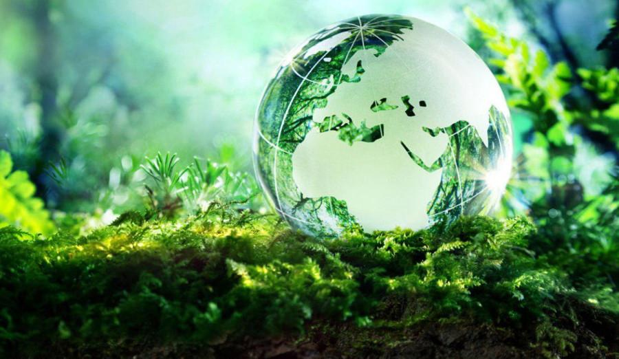 Топ-20 событий мая 2019 года в сфере экологии