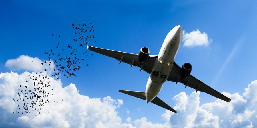 ЧП с А321. Почему нужна паспортизация аэропортов