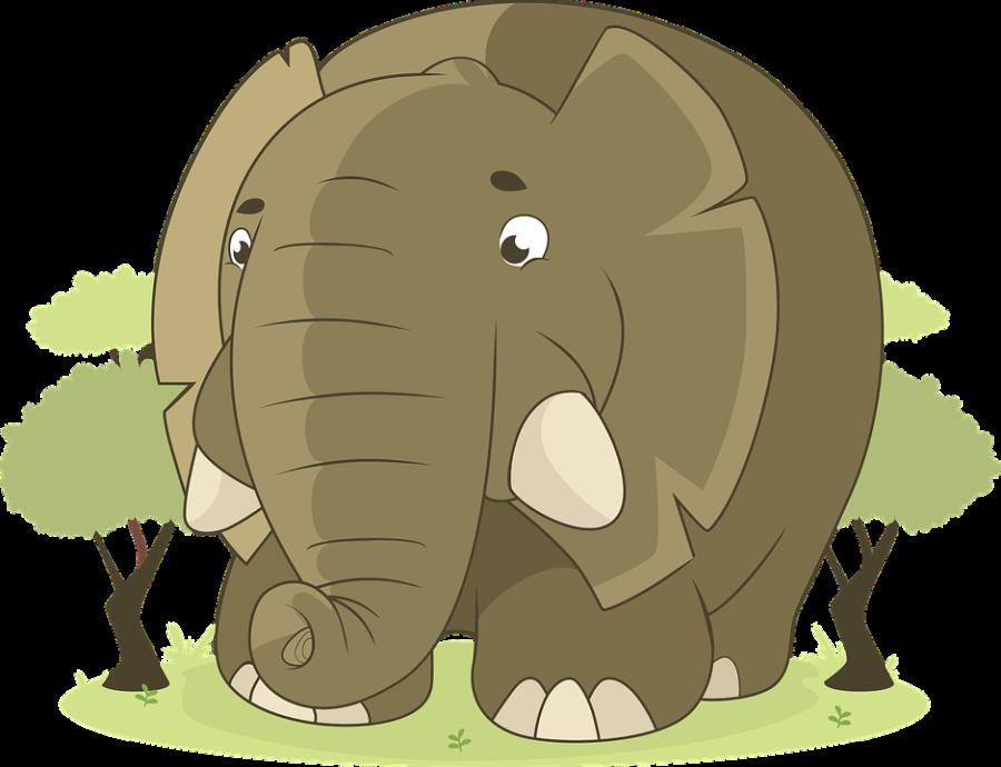 elephant-1598359_960_720
