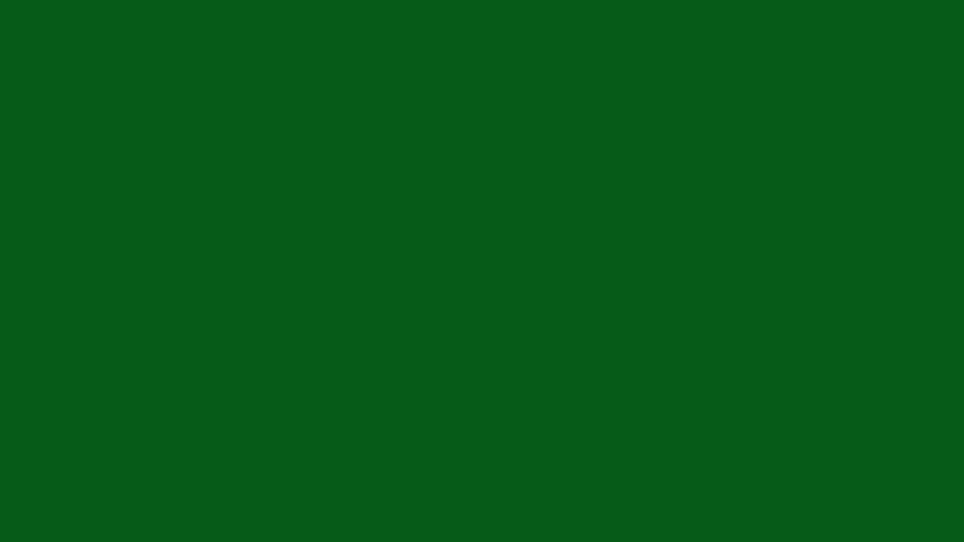 Зачем России новая «зеленая» партия