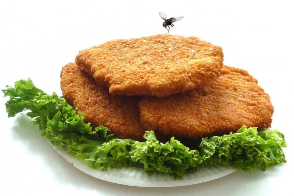 chicken-cutlet-1351331_1280