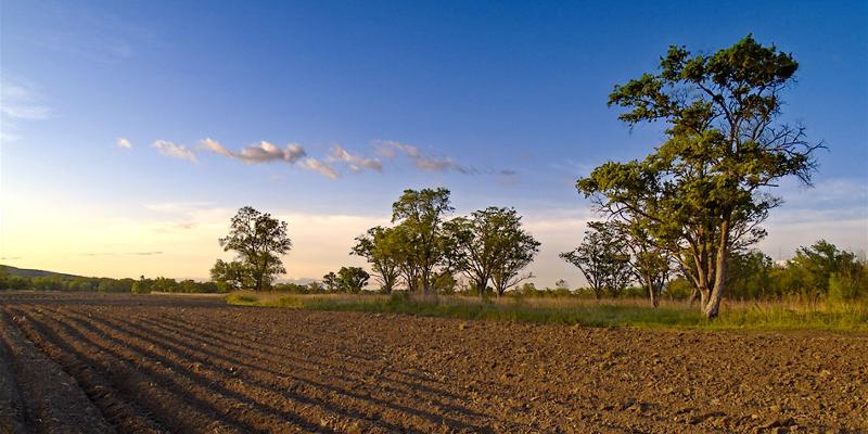Аграриям усложнят жизнь?