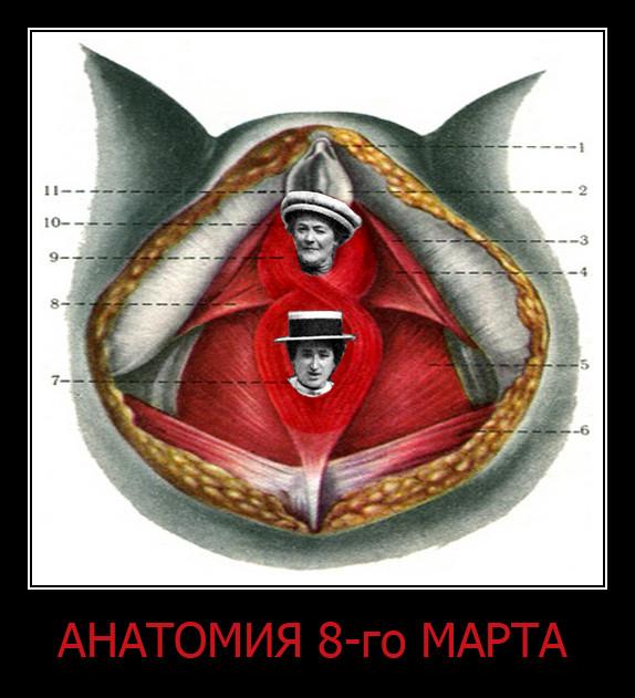 АНАТОМИЯ 8-го МАРТА