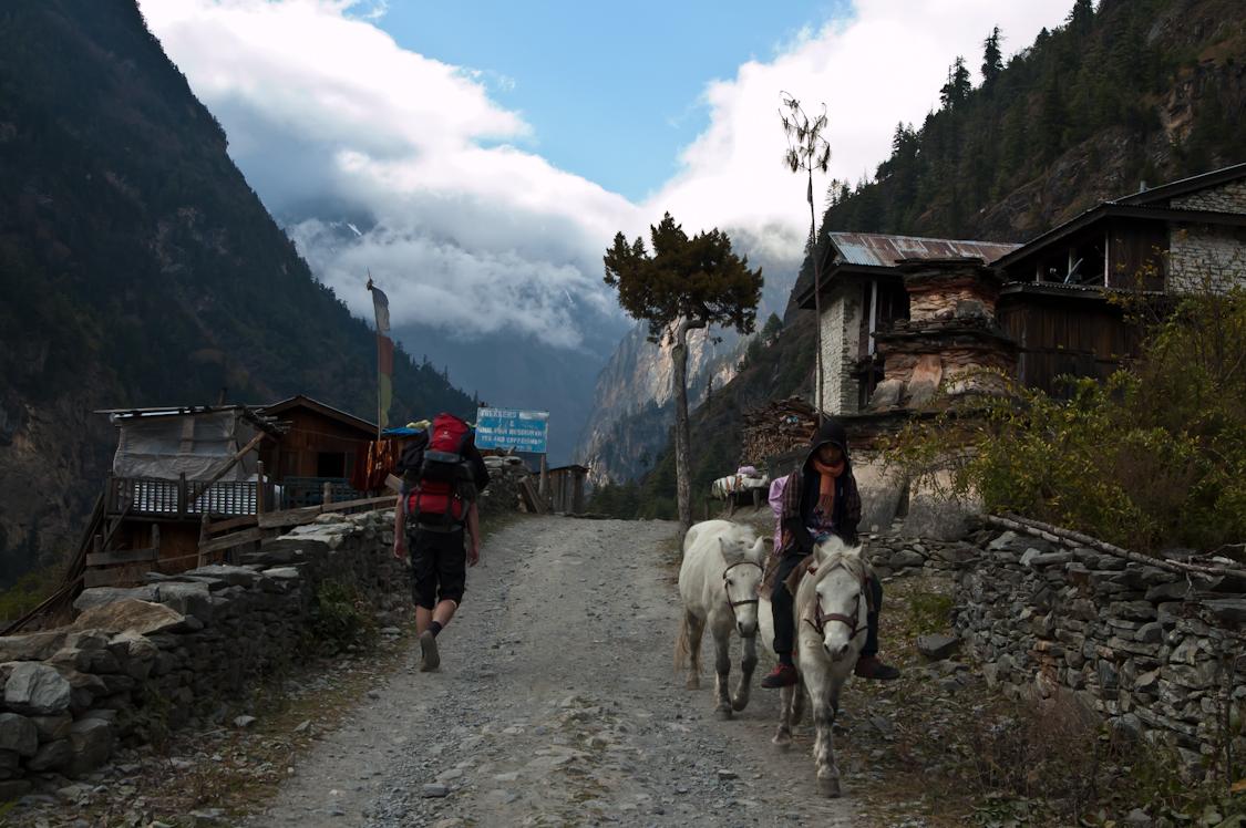 Nepal-142