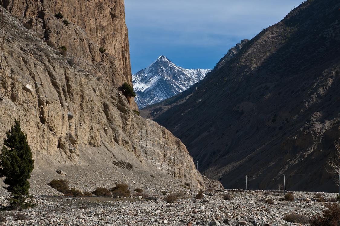 Nepal-303