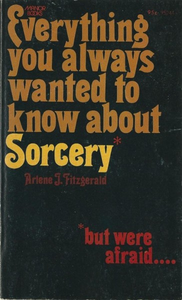 Everything You Ever Wanted To Know About Sorcery, But Were Afraid To Ask by Arlene J. Fitzgerald