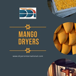 Must-know advantages of Mango Dryers