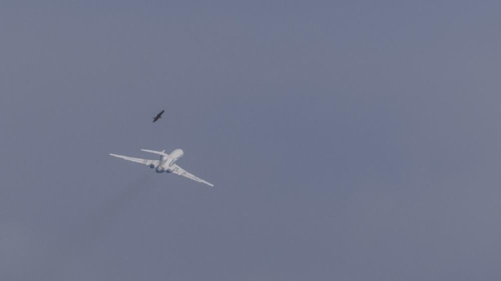 RA-85778 T154(M) Gazpromavia VKO Last Flight 9