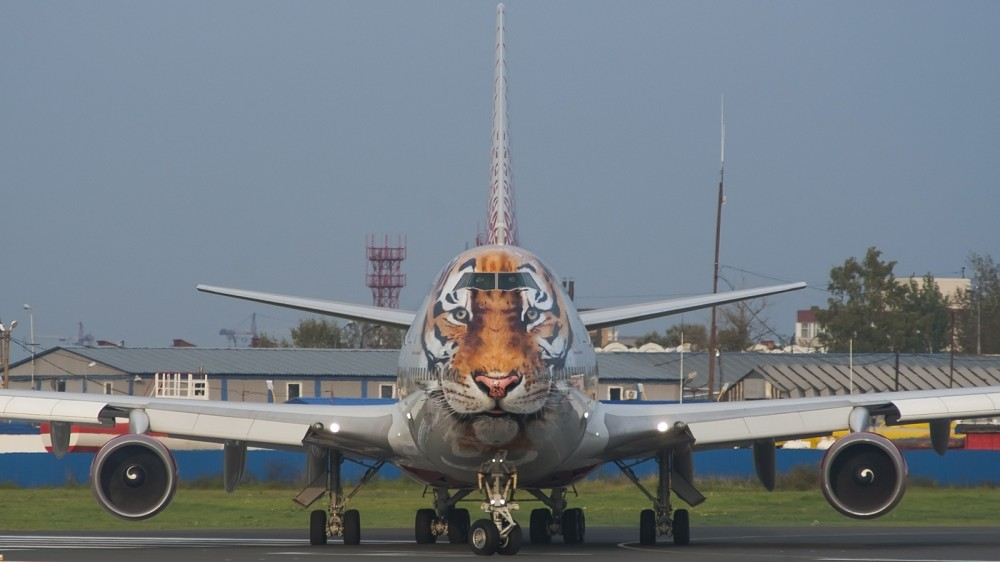 EI-XLD B744 Russia Tiger livery VKO 2