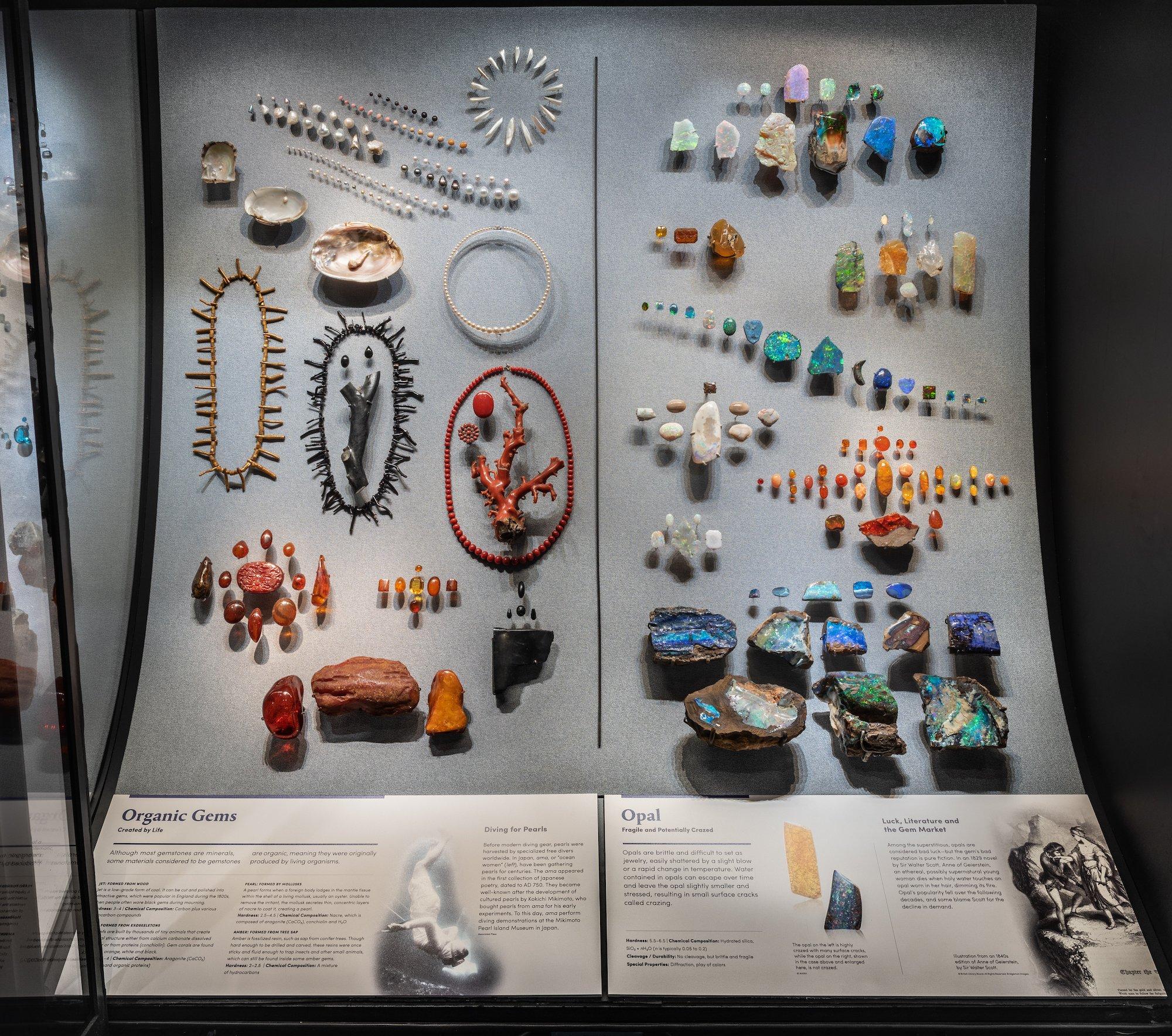 9.-Organic-Gems-and-Opal-Display.jpg