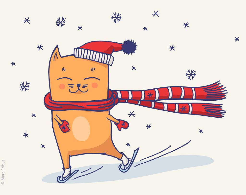 зимний котик