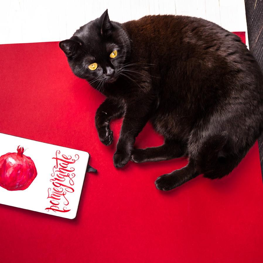 pomegranate-chernika.jpg