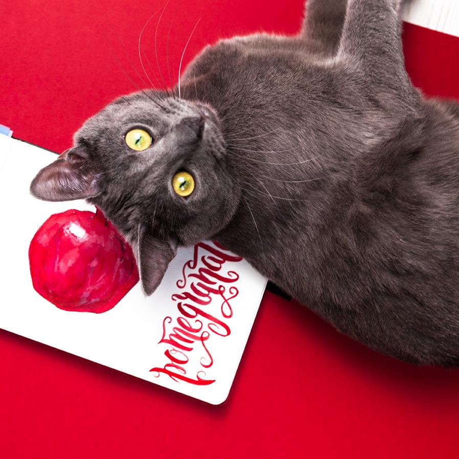 pomegranate-tucha.jpg