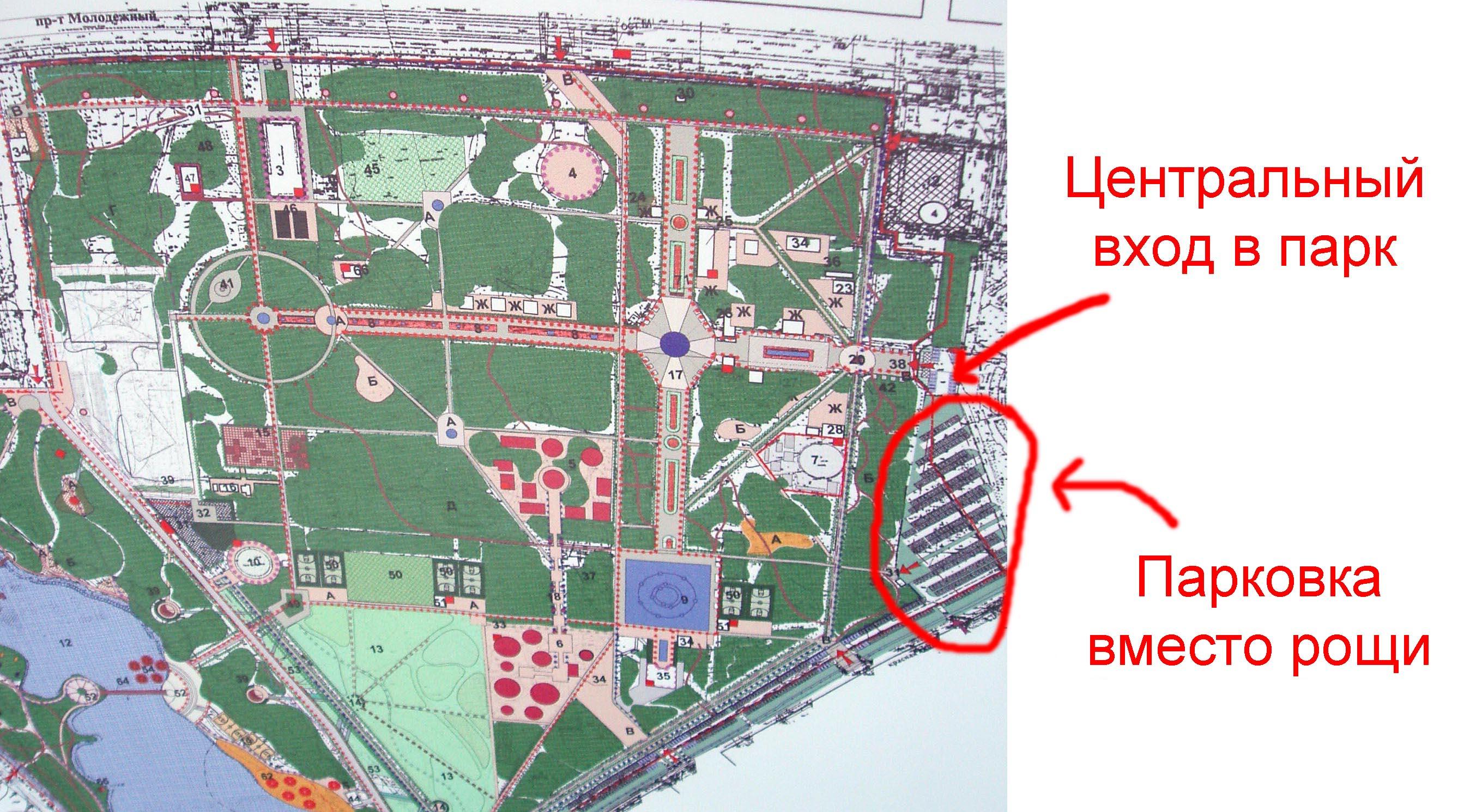 план вырубки под парковку