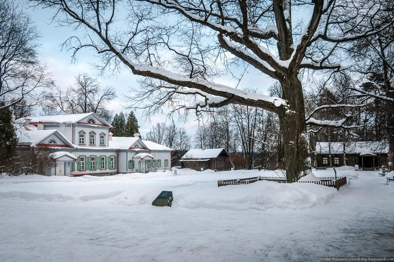 «Российским деревом года» был признан дуб из усадьбы Абрамцево