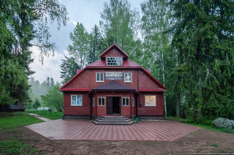 Гадюки в орловской области фото прирожденные хищники