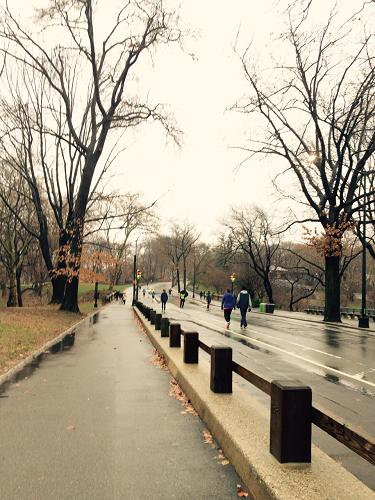 NY Park2