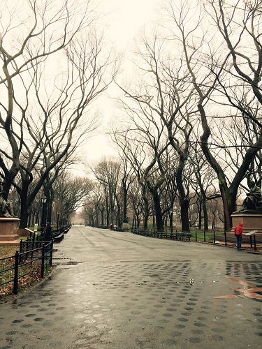 NY Park4
