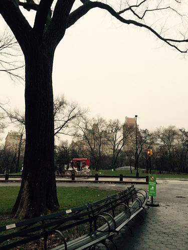 NY Park6