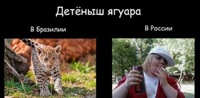 2012537_original