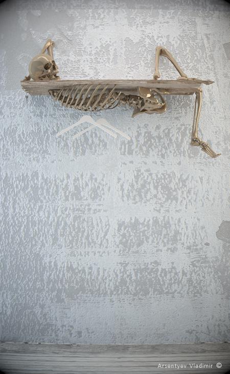 мебель со скелетами