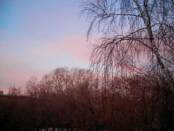 Розовое утро