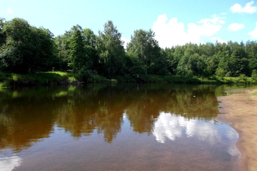 всех фото реки цны обмелевшей разбираться, почему время