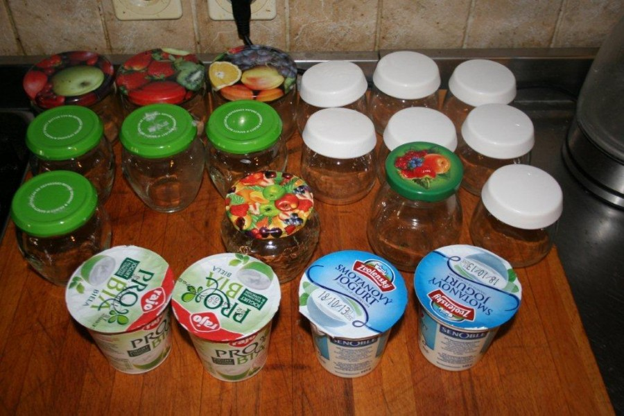 yogurt 023