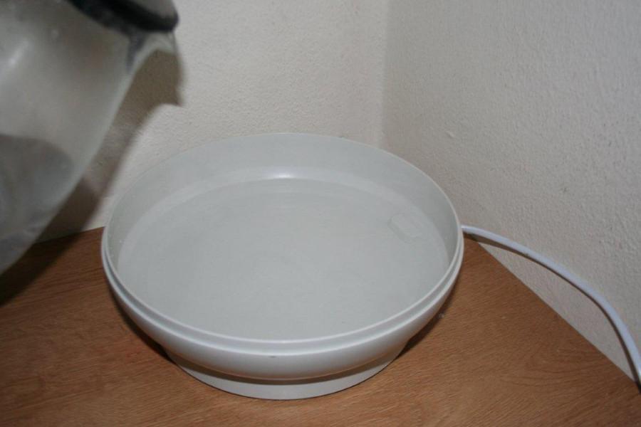 yogurt 041