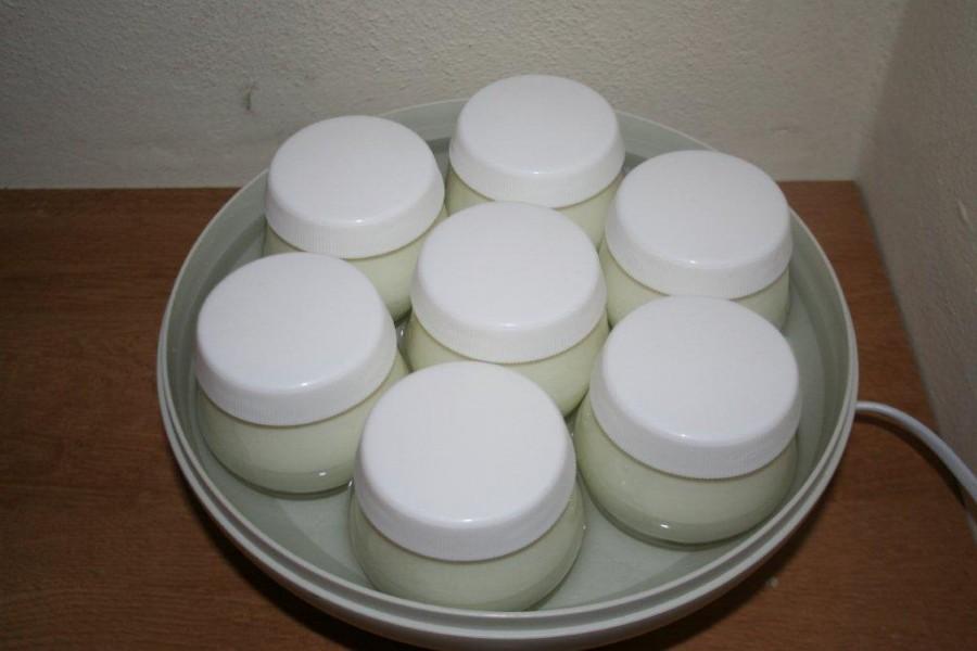 yogurt 042