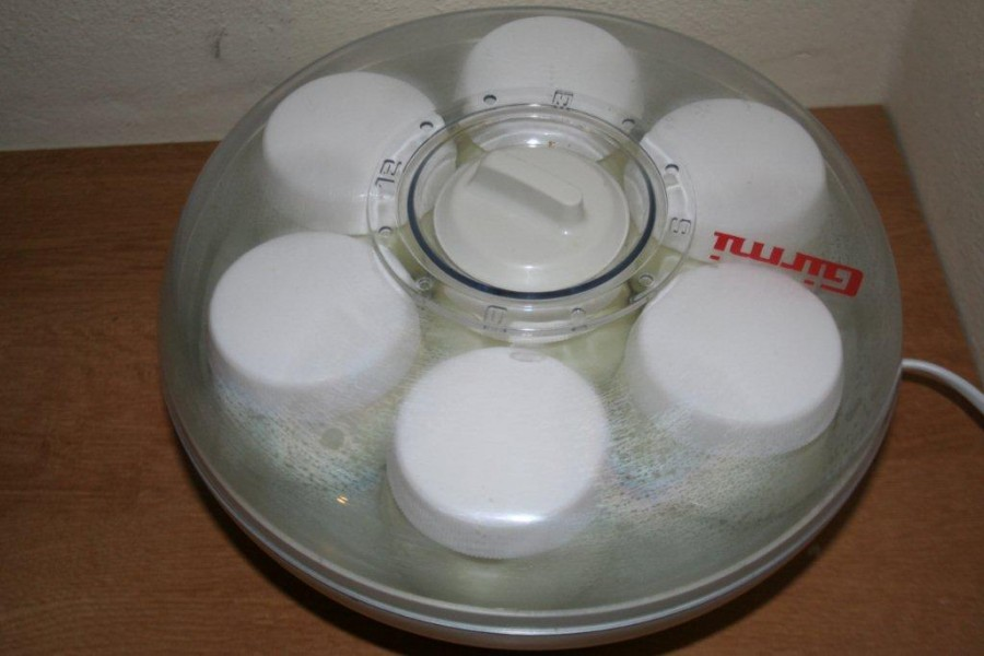 yogurt 043
