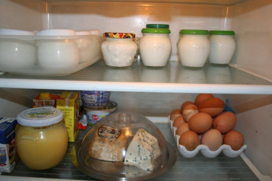 yogurt 055
