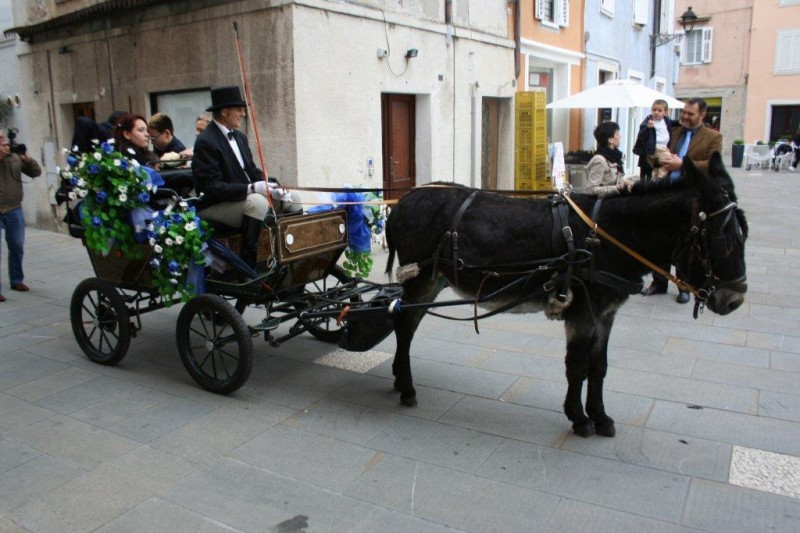 Trieste, maj 2014 037