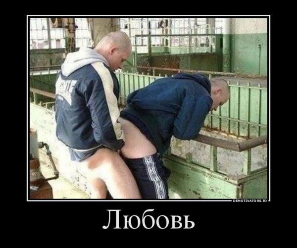 lyubov_demotivators