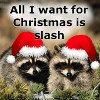 Christmas slash raccoons