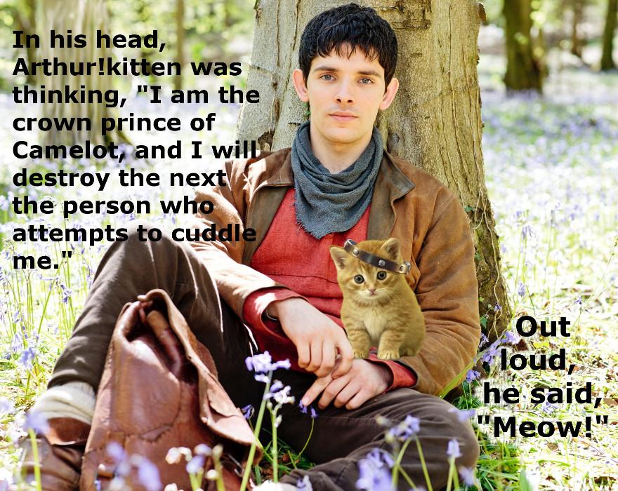 Arthur!kitten's angst