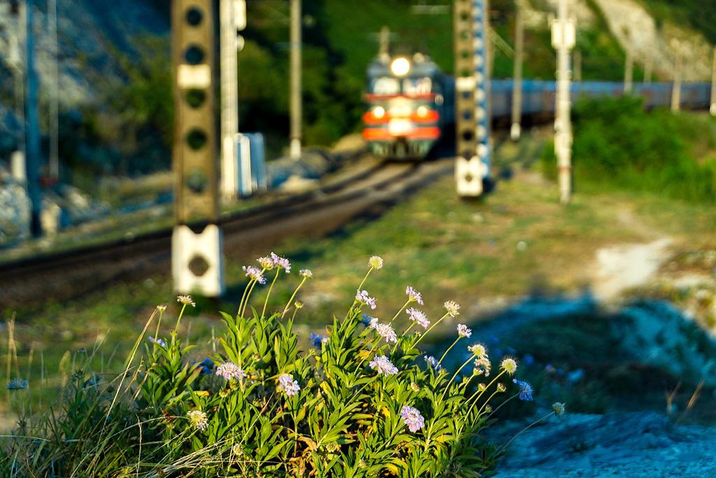 Берег трейнспоттера Вишнёвка, однопутный, проходит, старый, поезд, тоннель, Туапсе, Новый, вагонами, зелёными, пассажирский, старыми, 2ЭС4К, грузовым, Повёз, материалы, старенький, навстречу, составом, Очередной