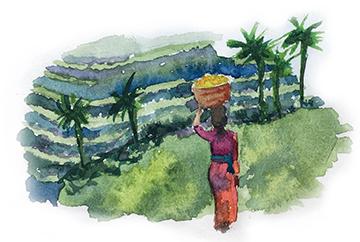 Артбук-мания на Бали