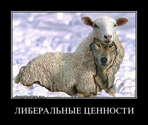 Картинки по запросу либерализм в россии картинки