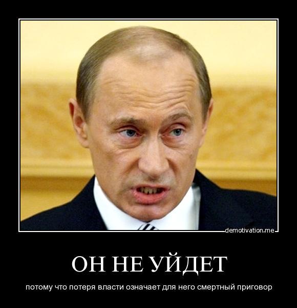Ограничения для миссии ОБСЕ на оккупированном Донбассе заставляет думать, что Россия там что-то скрывает, - Волкер - Цензор.НЕТ 624