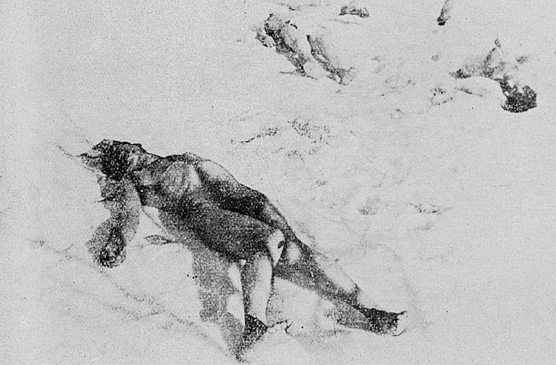 Обрезанные тела еврейских румынских жертв, выброшенные в снег в Джилаве, на берегу реки Сабар.  Википедия  site:wikichi.ru