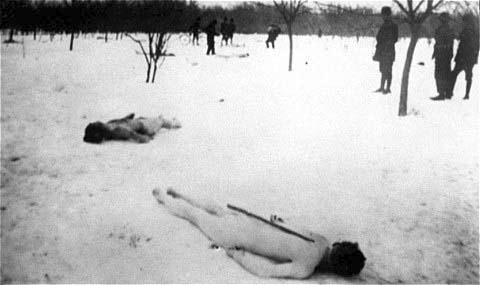Обрезанные тела еврейских румынских жертв. , выброшенные в снег в лесу Джилава.  Википедия  site:wikichi.ru