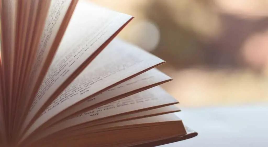 Положительный эффект от чтения можно ощутить как в краткосрочной, так и в долгосрочной перспективе.   Фото: pixabay