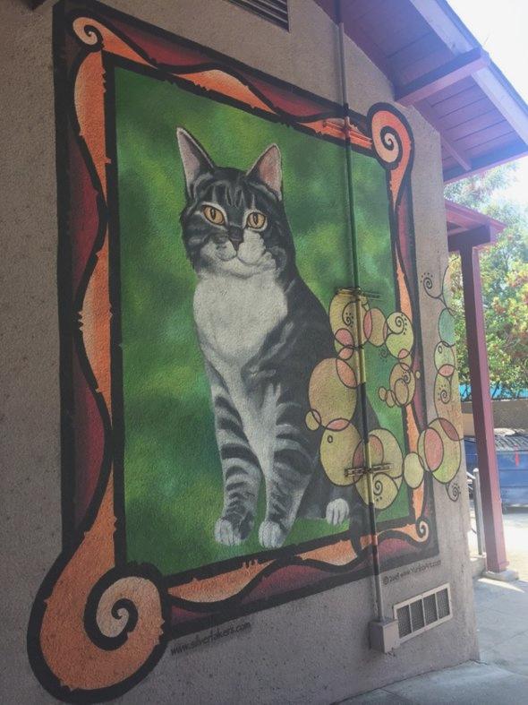 Портрет кота у входа в школу Elysian Heights Elementary / Фото: Lori Galarreta / KPCC