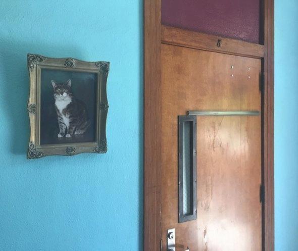 Портрет кота рядом с восьмой комнатой /  Фото: Lori Galarreta / KPCC