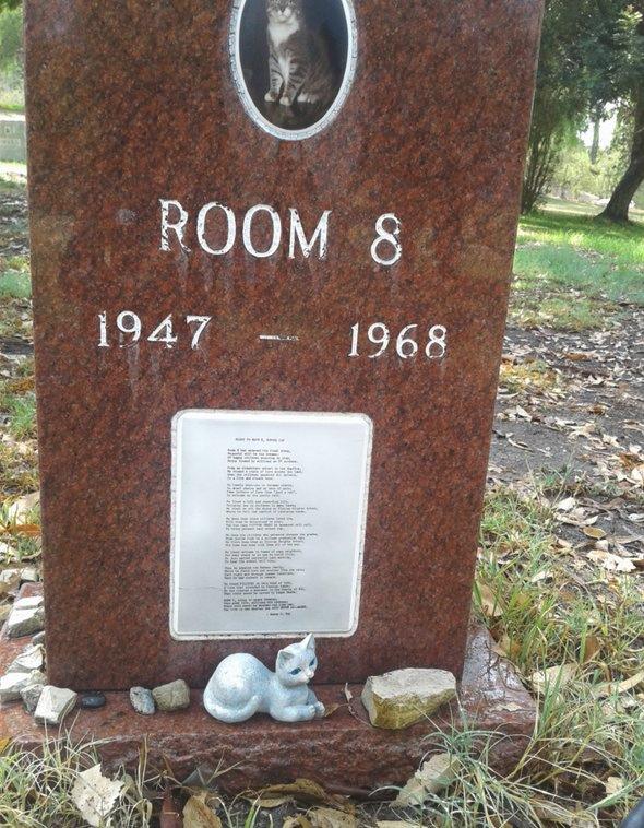 Надгробный камень / Фото: Devan Brown
