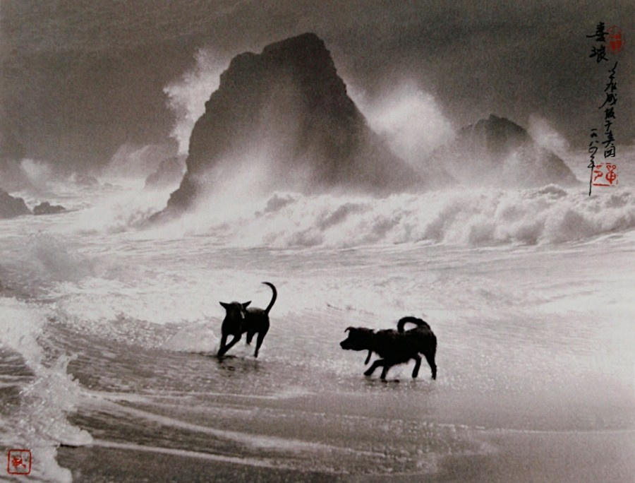 Don-Hong-Oai-42