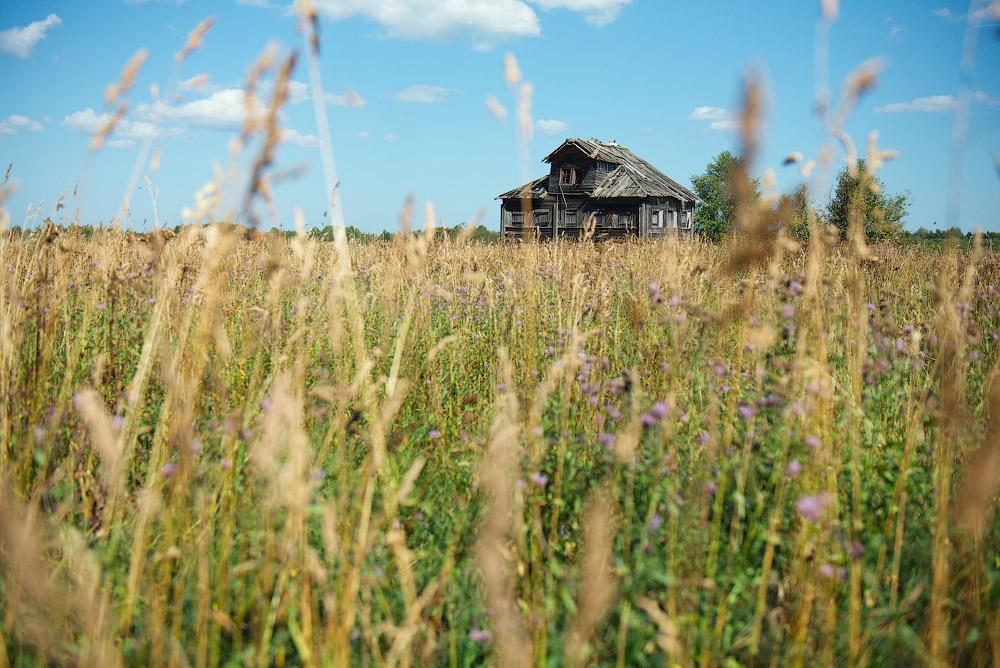 Картинки лето на севере